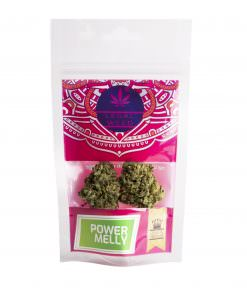 Cannabis Light - Inflorescenze - CBD Certificato - Legal Weed - Power Melly