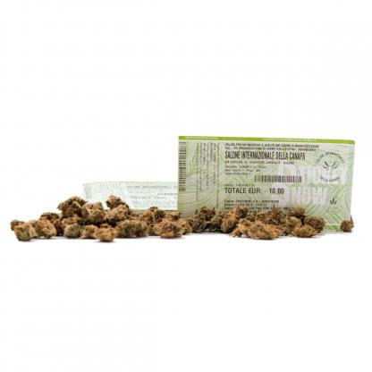 legal weed fiera canapa milano