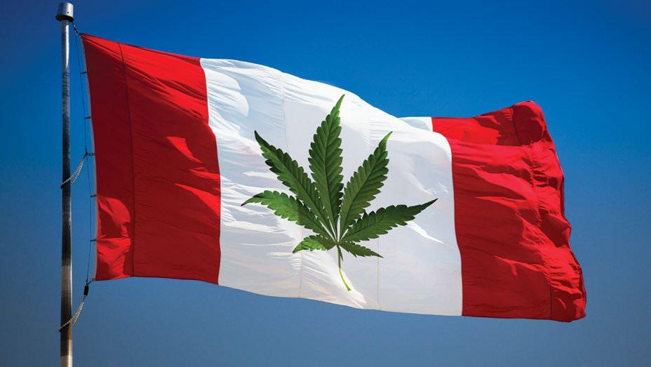 Il Canada ha legalizzato la cannabis per uso ricreativo