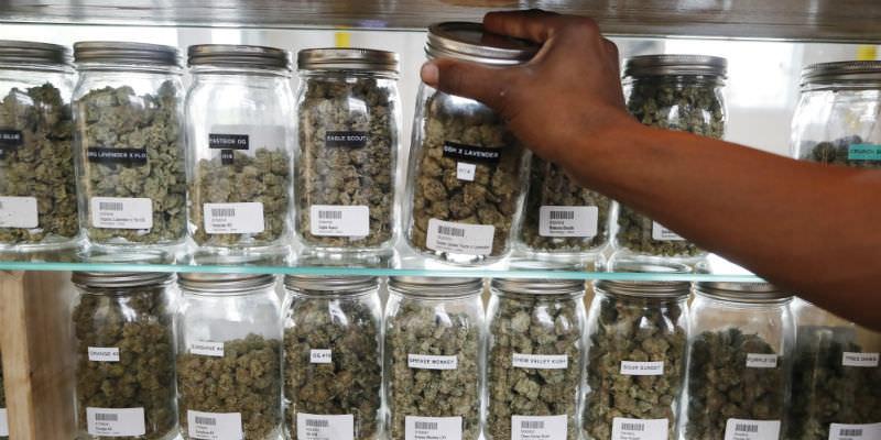 Anche il Michigan legalizza il consumo di marijuana