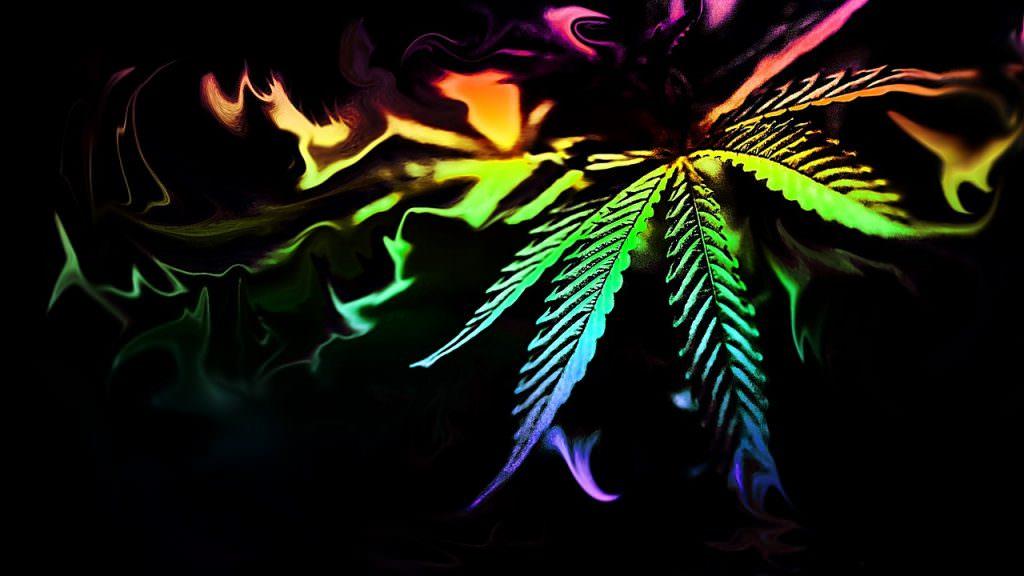 La Cannabis come antidoto all ansia e al panico