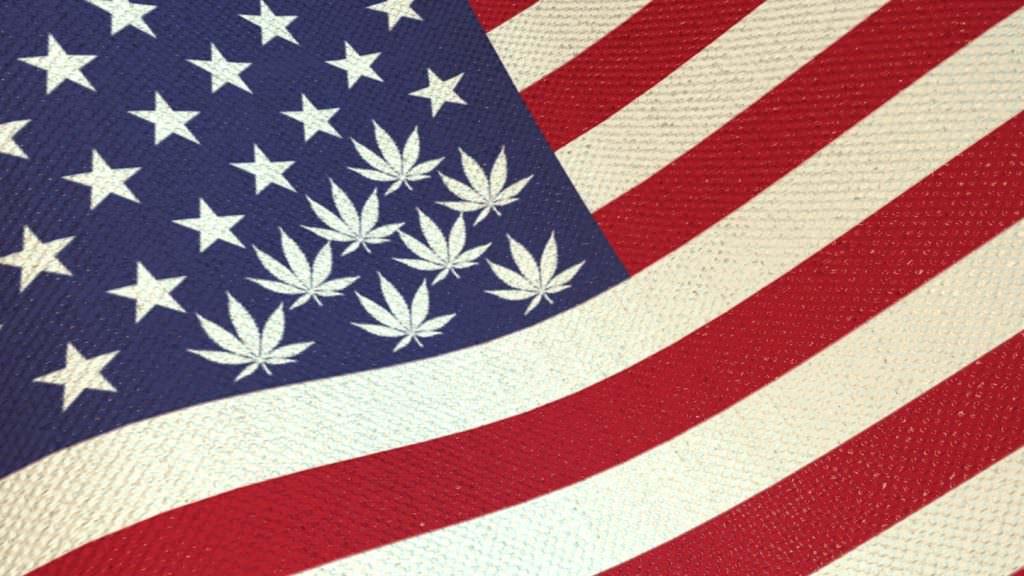 La legalizzazione della cannabis negli Stati Uniti l'economia cresce