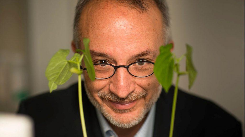 Stefano Mancuso e la vita segreta delle piante