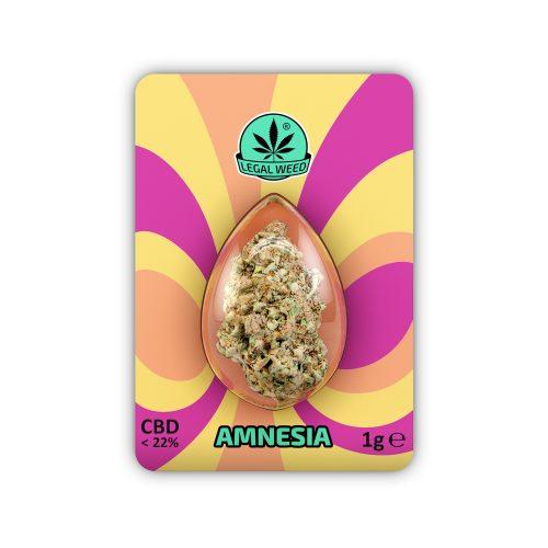 Legal Flower Amnesia