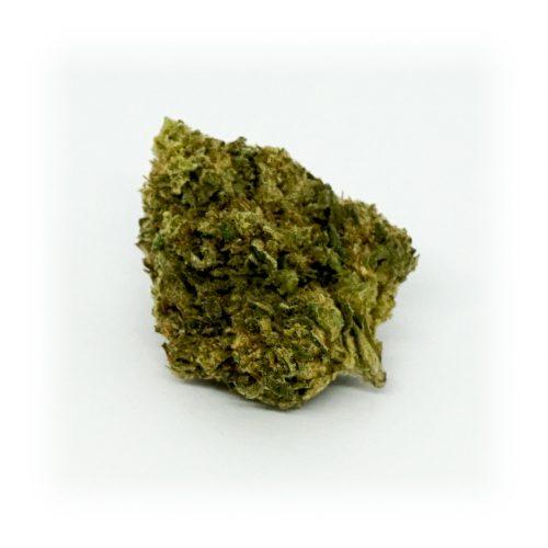 GOA-SHANTI-LEGAL-WEED