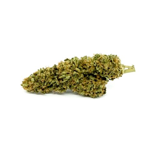 maria salvador top quality by legal weed
