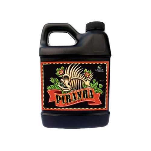 Piranha by legal weed