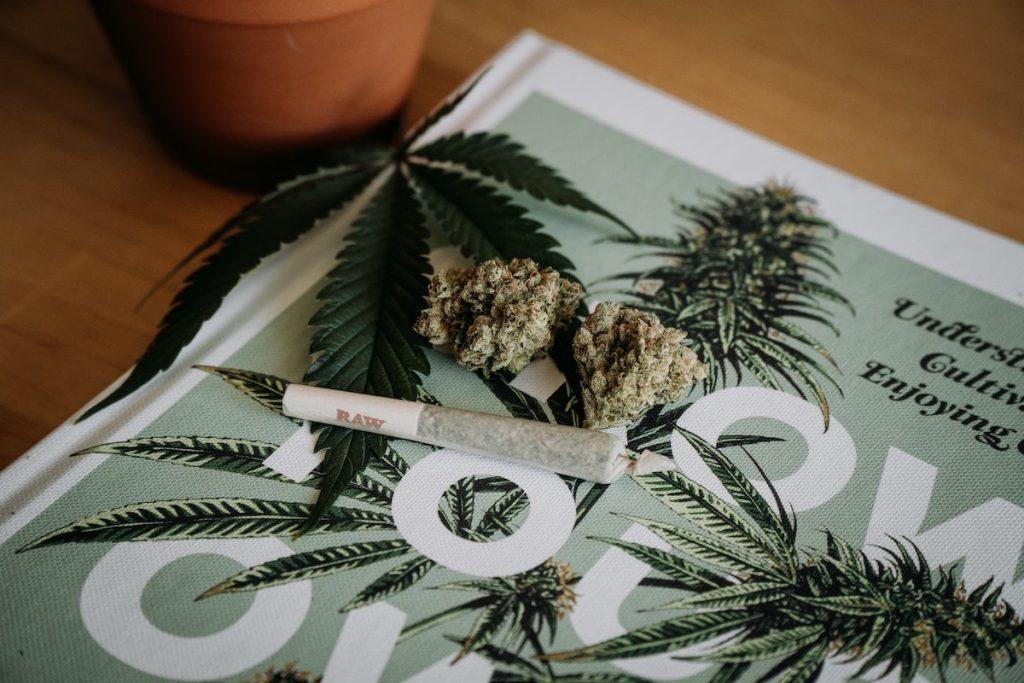 Dove acquistare cannabis