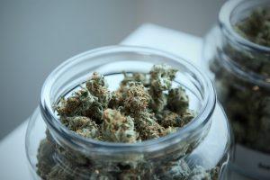 Conservare la cannabis