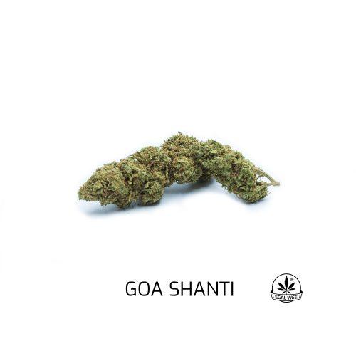 goa shanti