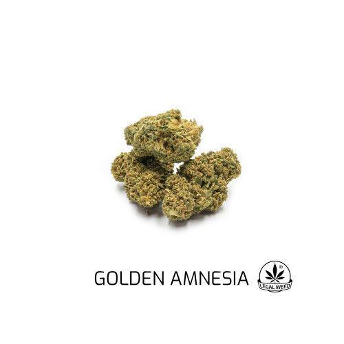 golden amnesia