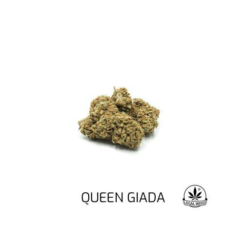 queen giada
