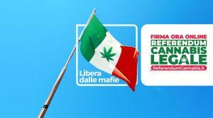 Referendum Cannabis legale